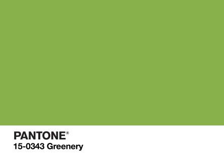 PANTONE-Color-of-the-Year-2017-2732x2048.jpg